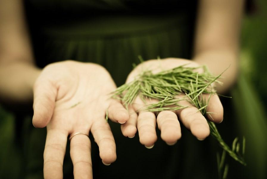 holding nature